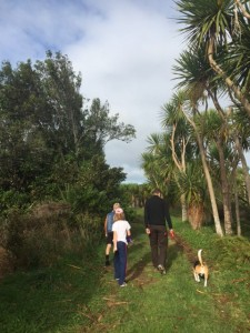 A dog walk around Lake D (Kainui)